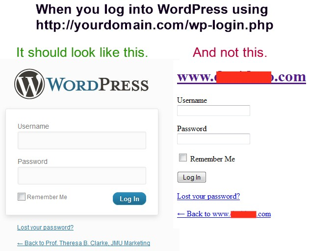 Example of a WordPress Login Screen